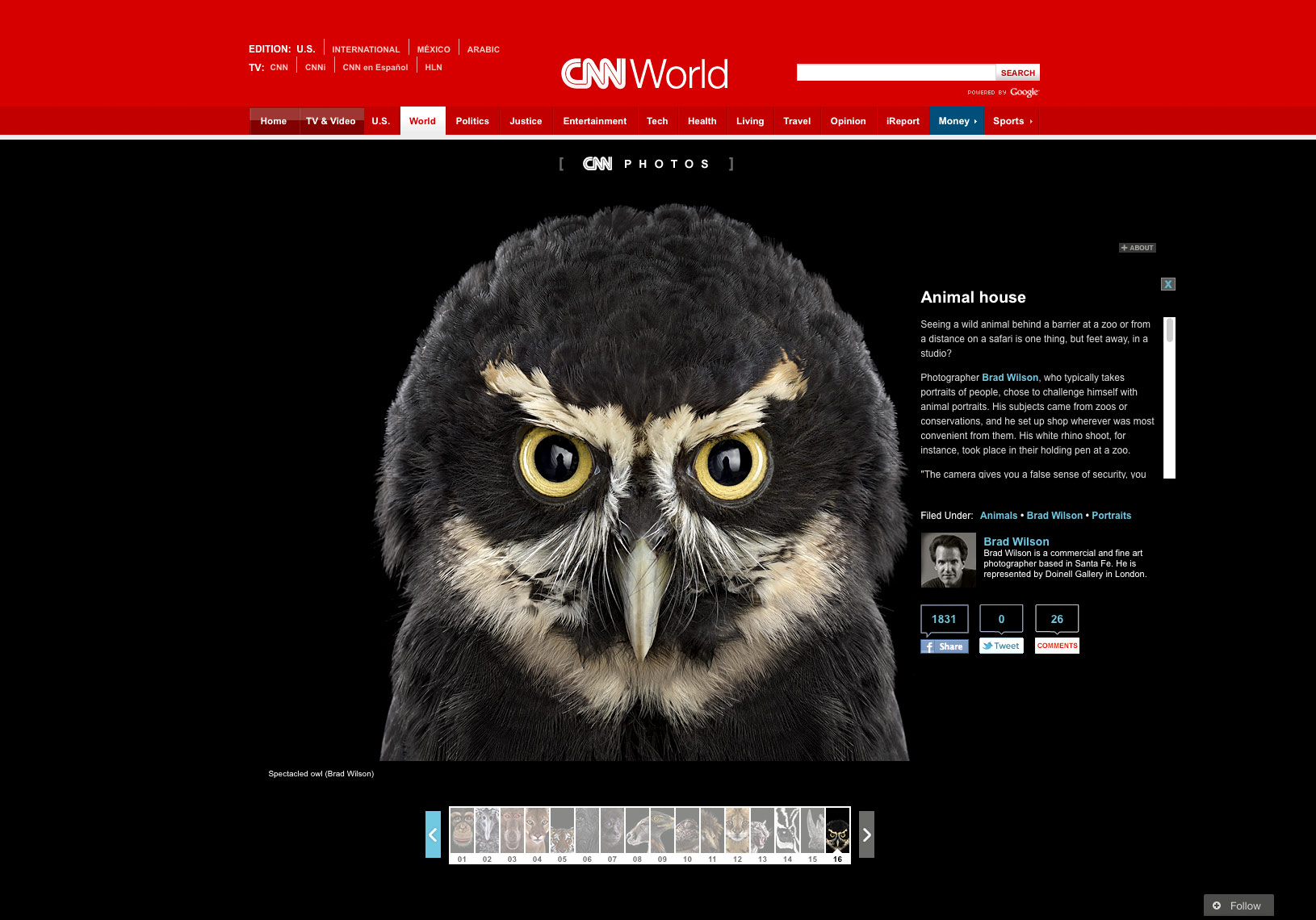 CNN article about fine art animal photographer Brad Wilson