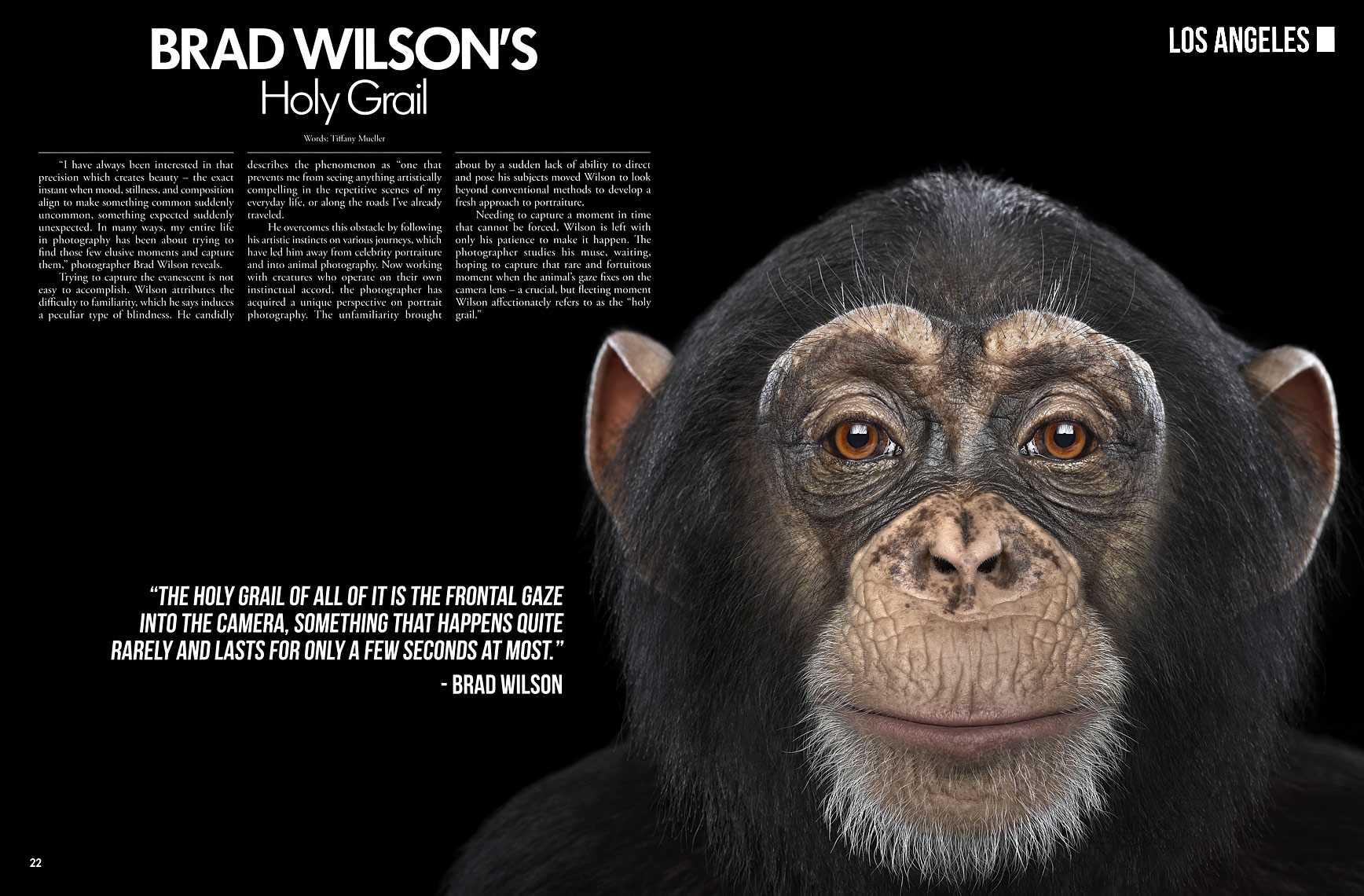 Creativ Magazine article by fine art animal photographer Brad Wilson