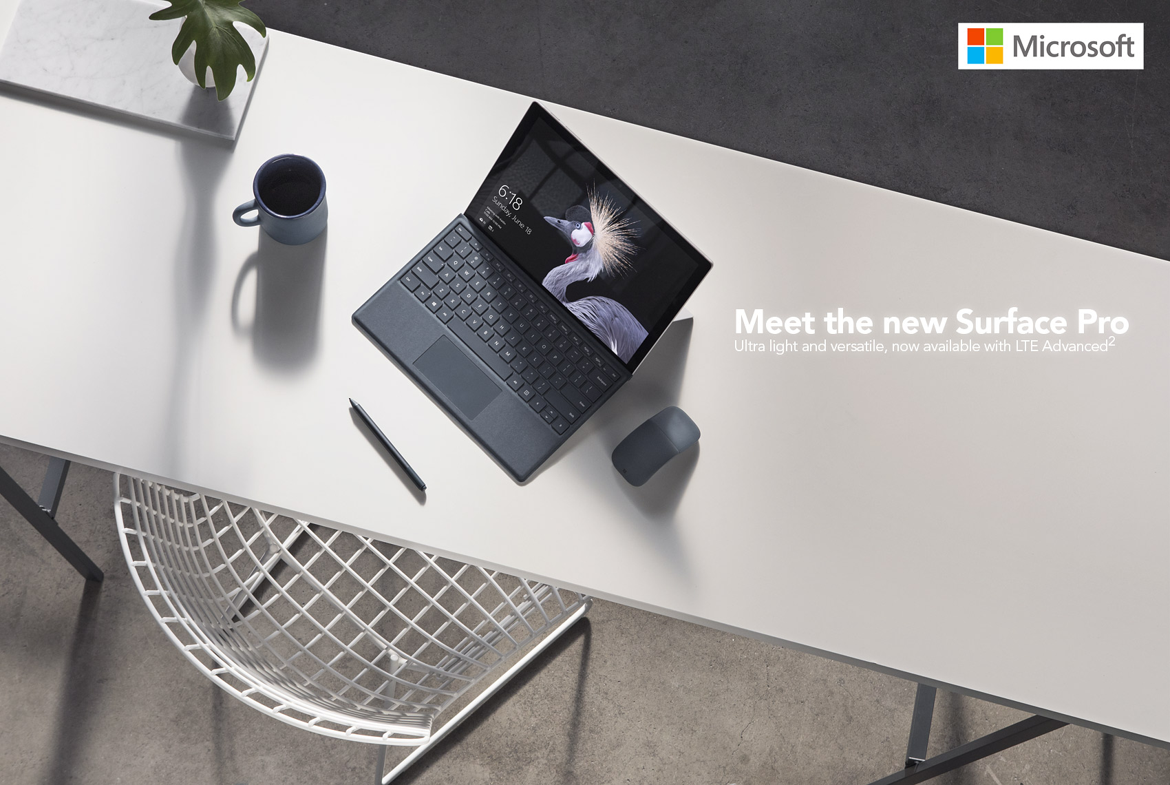 Microsoft advertisement by wildlife photographer Brad Wilson