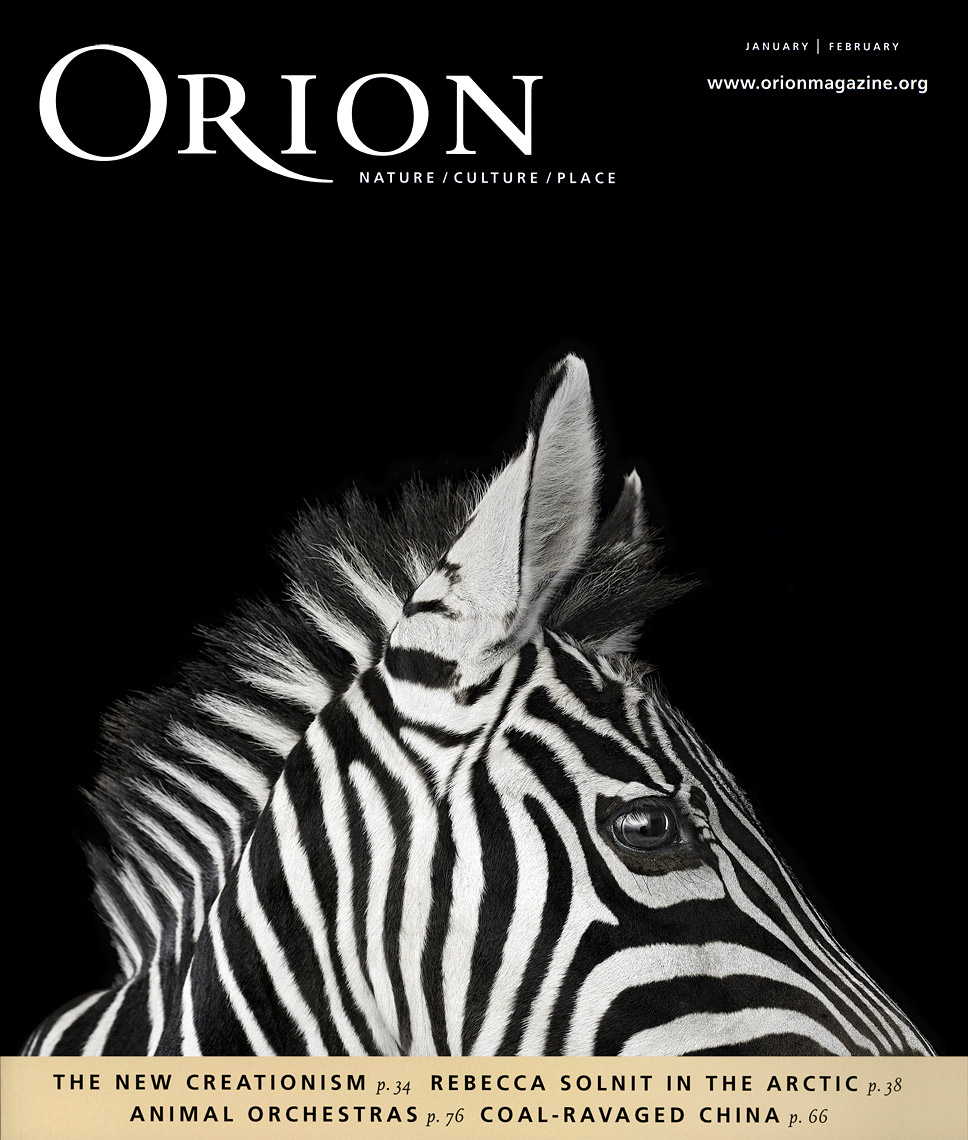 Orion Magazine cover by fine art wildlife photographer Brad Wilson