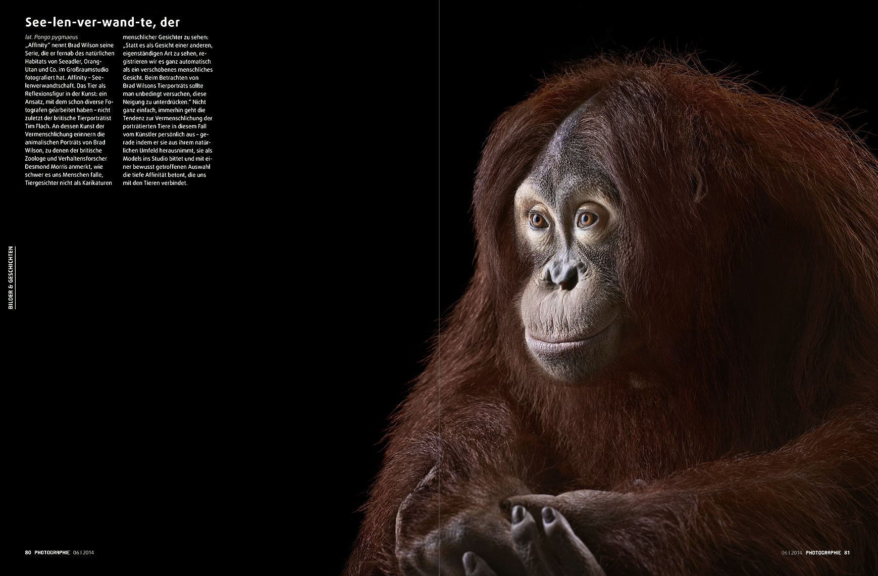 Photographie Magazine article about fine art animal photographer Brad Wilson