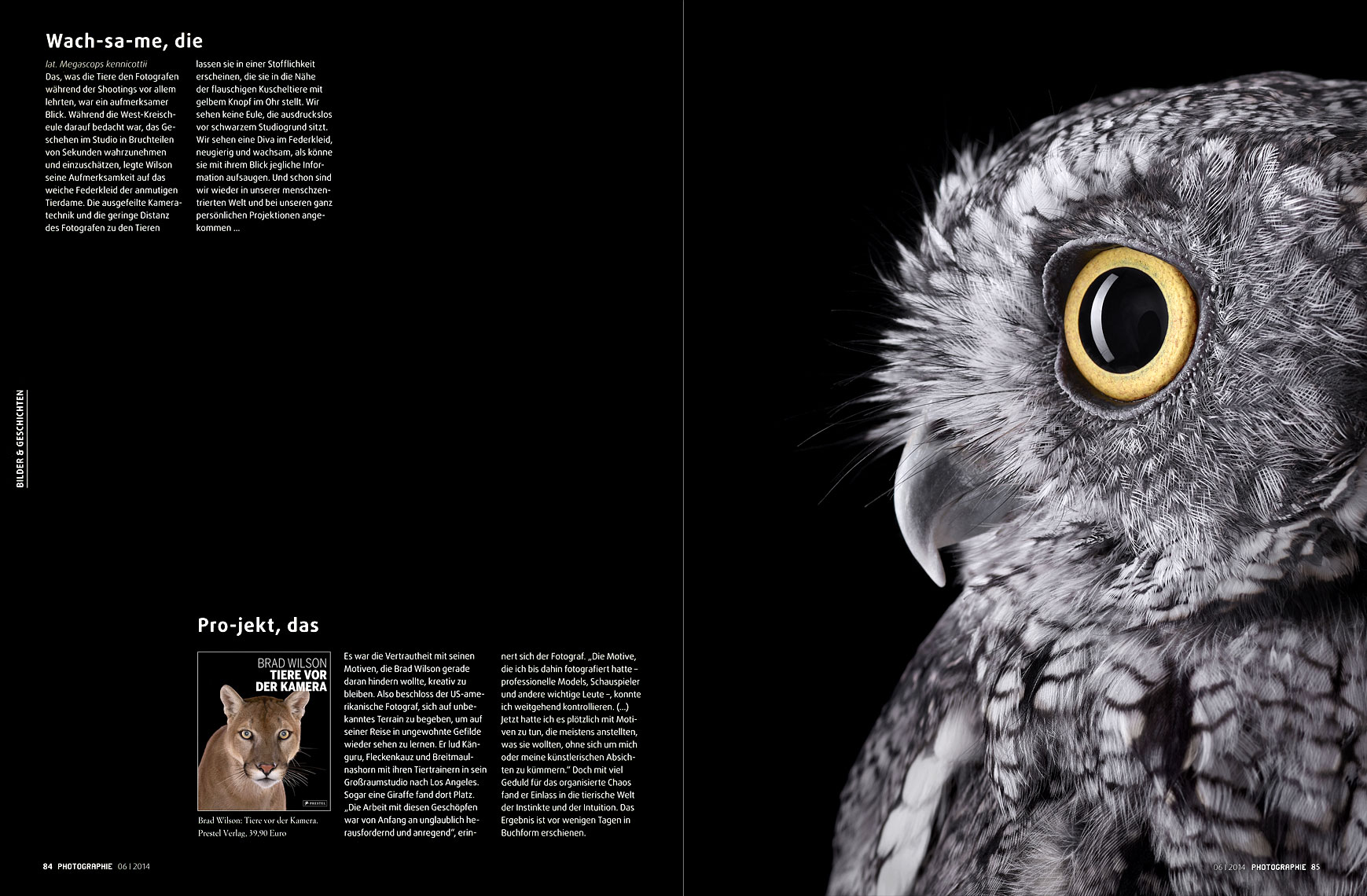 Photographie Magazine article about animal photographer Brad Wilson
