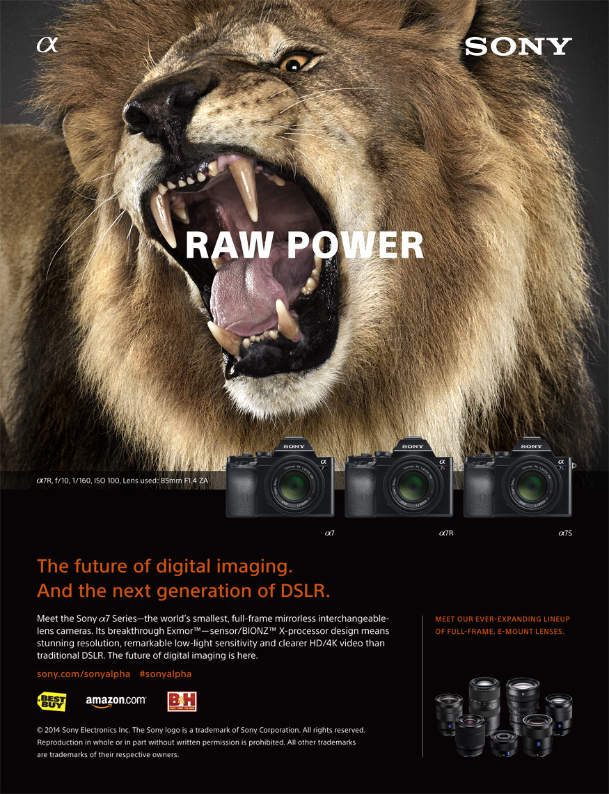 Sony advertisement by fine art animal photographer Brad Wilson