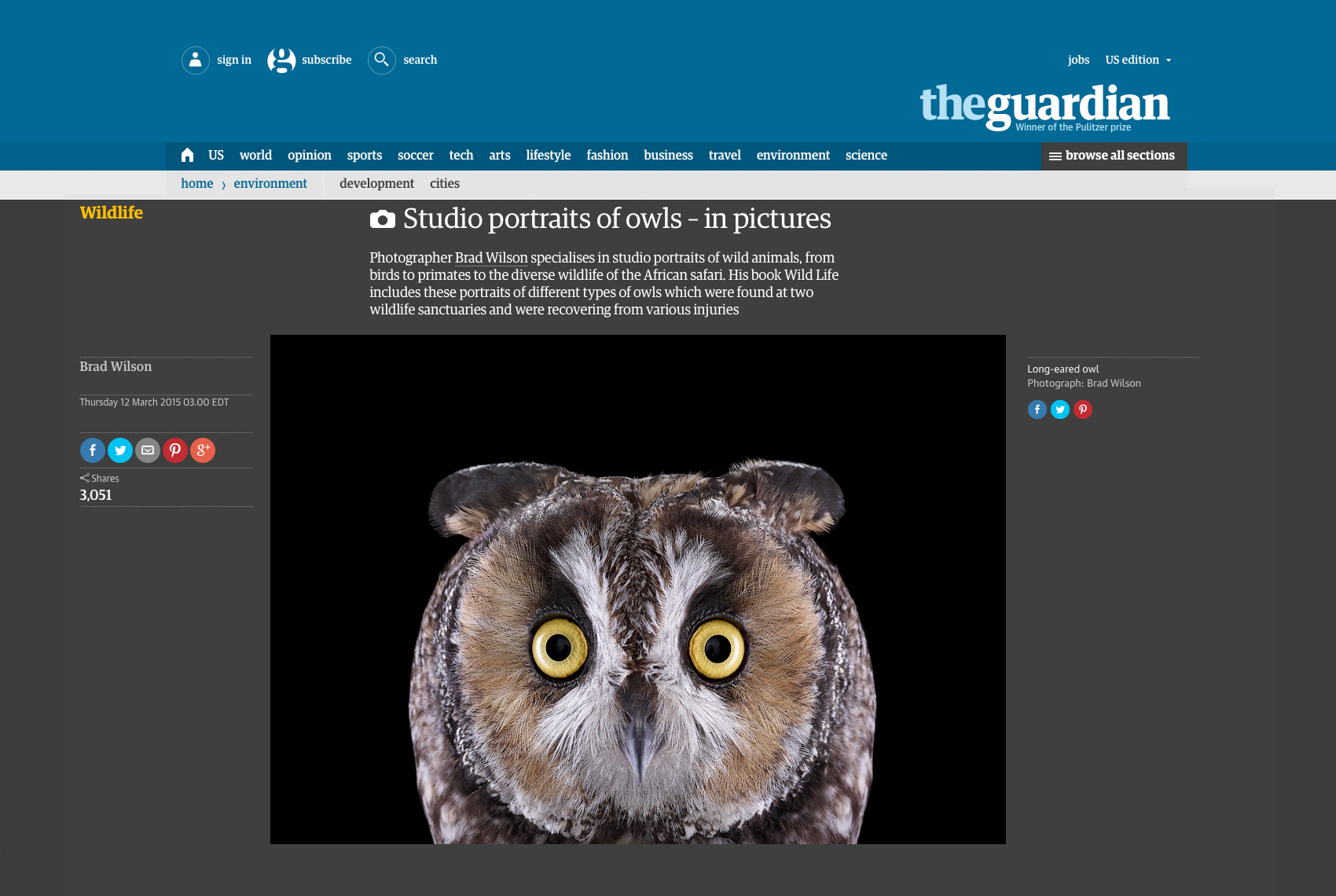 The Guardian  article about fine art wildlife photographer Brad Wilson