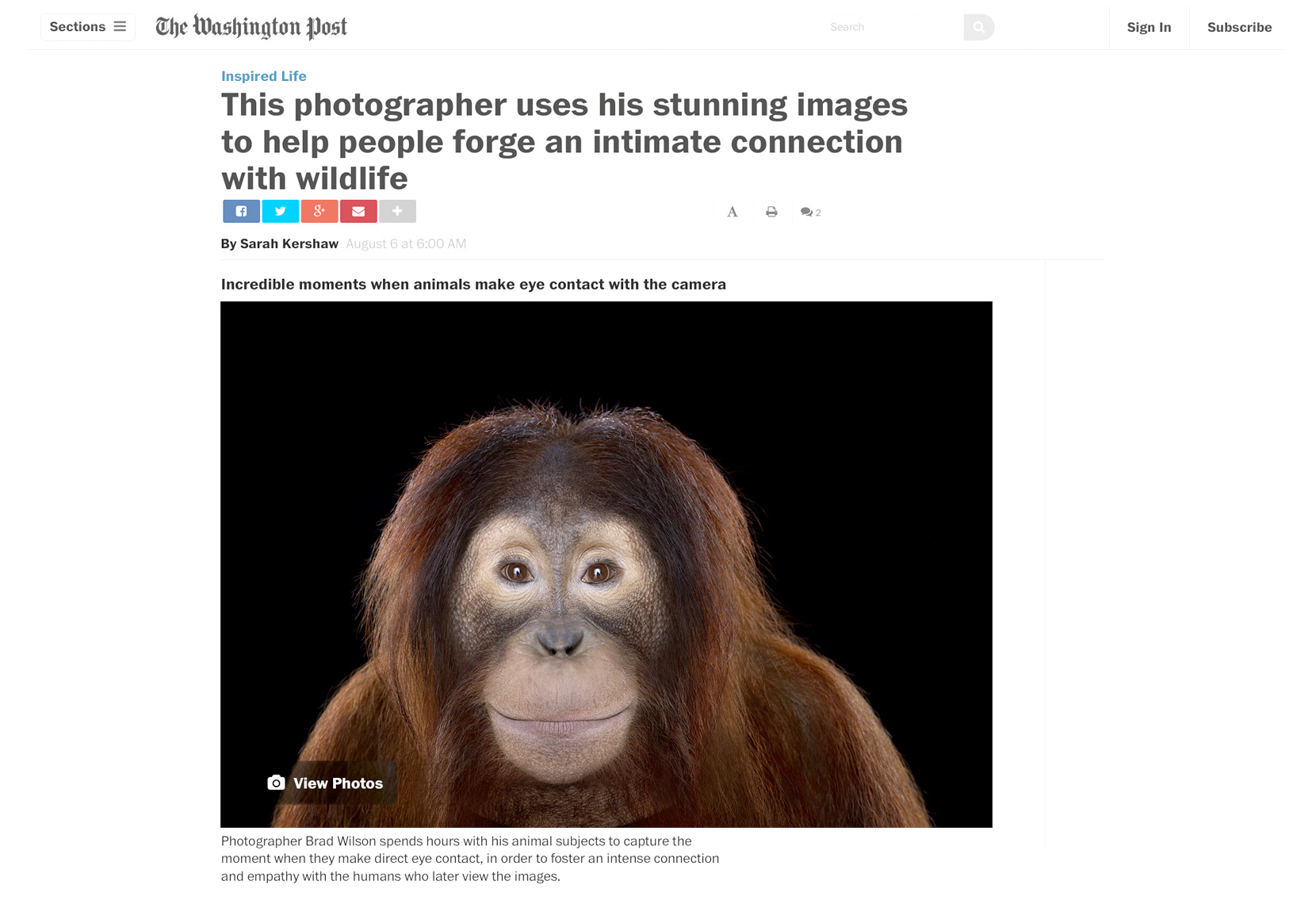 Washington Post  article about fine art wildlife photographer Brad Wilson